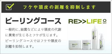 〜RE>>LIFE〜ピーリングコース