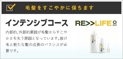 〜RE>>LIFE〜スーシングコース